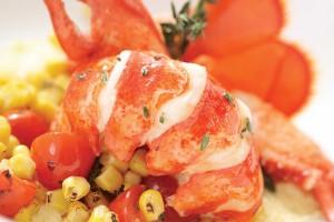 TGB_Lobster